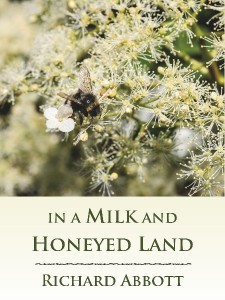 In a Milk and Honeyed Land - new cover